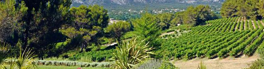 Domaines Benoit